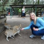 Feed kangaroos in Australia- Travel the world